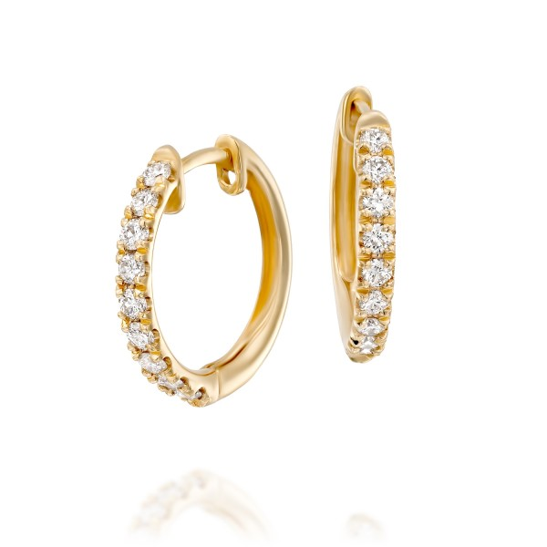 HOOPS Earrings - EIE41765